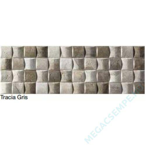TRACIA GRIS 15X45